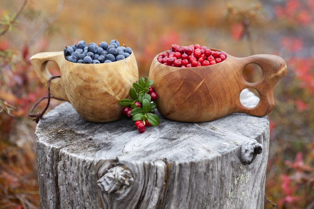 Lingonberries and blueberries
